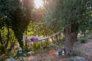Relax e meditazione nel boschetto di Tre Casiedde